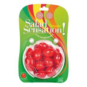 Tomate Thebeschi Salad Sensation 300g